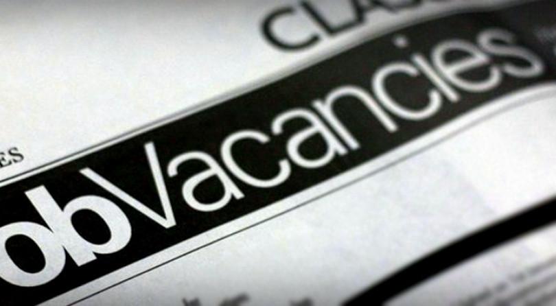 ¡¡Job Opportunities!!