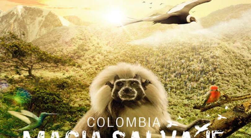 Colombia Magia Salvaje |Lo que 'Colombia Magia Salvaje' debe dejar en usted